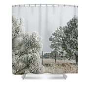 Frozen Fog On Pine Trees Shower Curtain