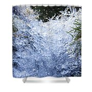 Frozen II Shower Curtain