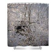 Frozen In Ice Shower Curtain