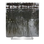 Frozen Lake Reflection Shower Curtain