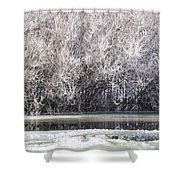 Frozen Shower Curtain