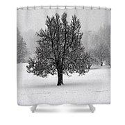 Frozen One No2 Shower Curtain
