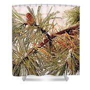 Frozen Pine Shower Curtain