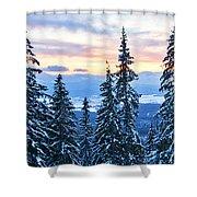 Frozen Reflection 2 Shower Curtain