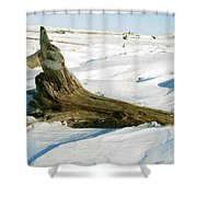 Frozen Shores Shower Curtain