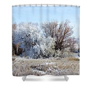 Frozen Trees By The Lake Shower Curtain
