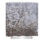 Frozen Trees During Winter Storm Shower Curtain