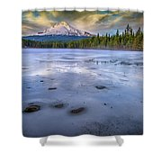 Frozen Trillium Shower Curtain