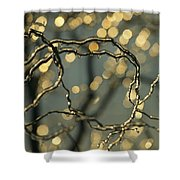 Frozen Twigs Of A Corkscrew Willow Shower Curtain