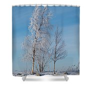 Frozen Views 1 Shower Curtain