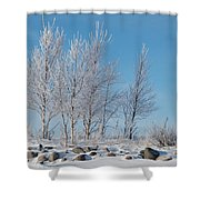 Frozen Views 2 Shower Curtain