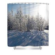 Frozen Views 3 Shower Curtain