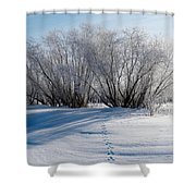 Frozen Views 4 Shower Curtain