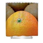 Fruit Basket. Orange. Shower Curtain