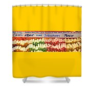 Fruit Logs Shower Curtain