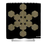 Fruit Of Flowers Shower Curtain