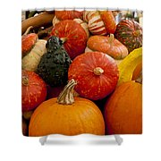 Fruit Of The Harvest Shower Curtain
