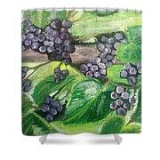 Fruit On The Vine Shower Curtain