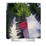 Fruitful Beauty Shower Curtain