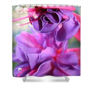 Fuchsia Drama Shower Curtain