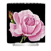 Fuchsia Rose Shower Curtain