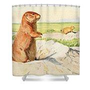 Fuertes, Louis Agassiz 1874-1927 - Burgess Animal Book For Children 1920 Prairie Dog Shower Curtain