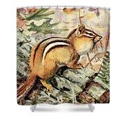 Fuertes, Louis Agassiz 1874-1927 - Burgess Animal Book For Children 1920 Striped Chipmunk Shower Curtain