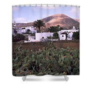 Fuerteventura Iv Shower Curtain