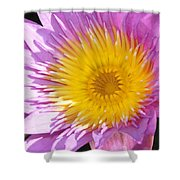 Full Bloom Shower Curtain