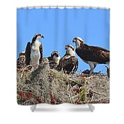 Full House Shower Curtain