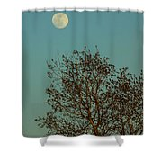 Full Moon At Sunset Shower Curtain