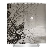 Full Moon Behind Cottonwood Tree Shower Curtain