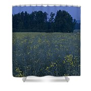 Full Moon Setting Over Rapeseed Field Shower Curtain