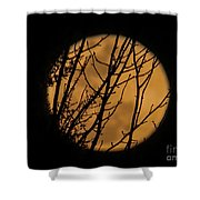 Full Moon Through The Branches Shower Curtain