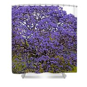 Full On Purple Shower Curtain