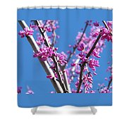 Full Pink Shower Curtain