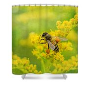 Fully Loaded Shower Curtain