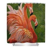 Fun Flamingos Shower Curtain