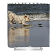 Fun In The Surf Shower Curtain