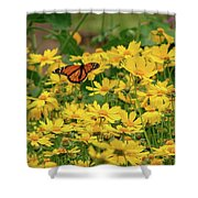 Funchal Maderia Monarch Shower Curtain