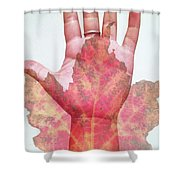 Function Of The Universe Shower Curtain