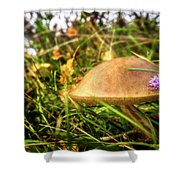 Funghi, Cashel Forest Shower Curtain