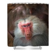 Funny Baboon Shower Curtain