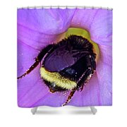 Fur Skirt Shower Curtain