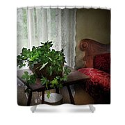 Furniture - Plant - Ivy In A Window  Shower Curtain by Mike Savad