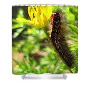 Furry Caterpillar On A Yellow Flower Shower Curtain