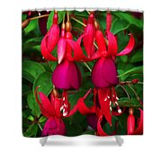 Fuschia Heron Shower Curtain