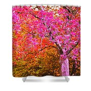 Fuschia Tree Shower Curtain