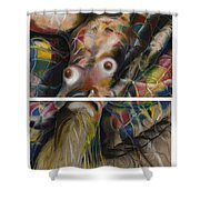 Fusion II - Diptych Shower Curtain