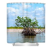Future Island Shower Curtain